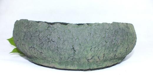 DSCF5780